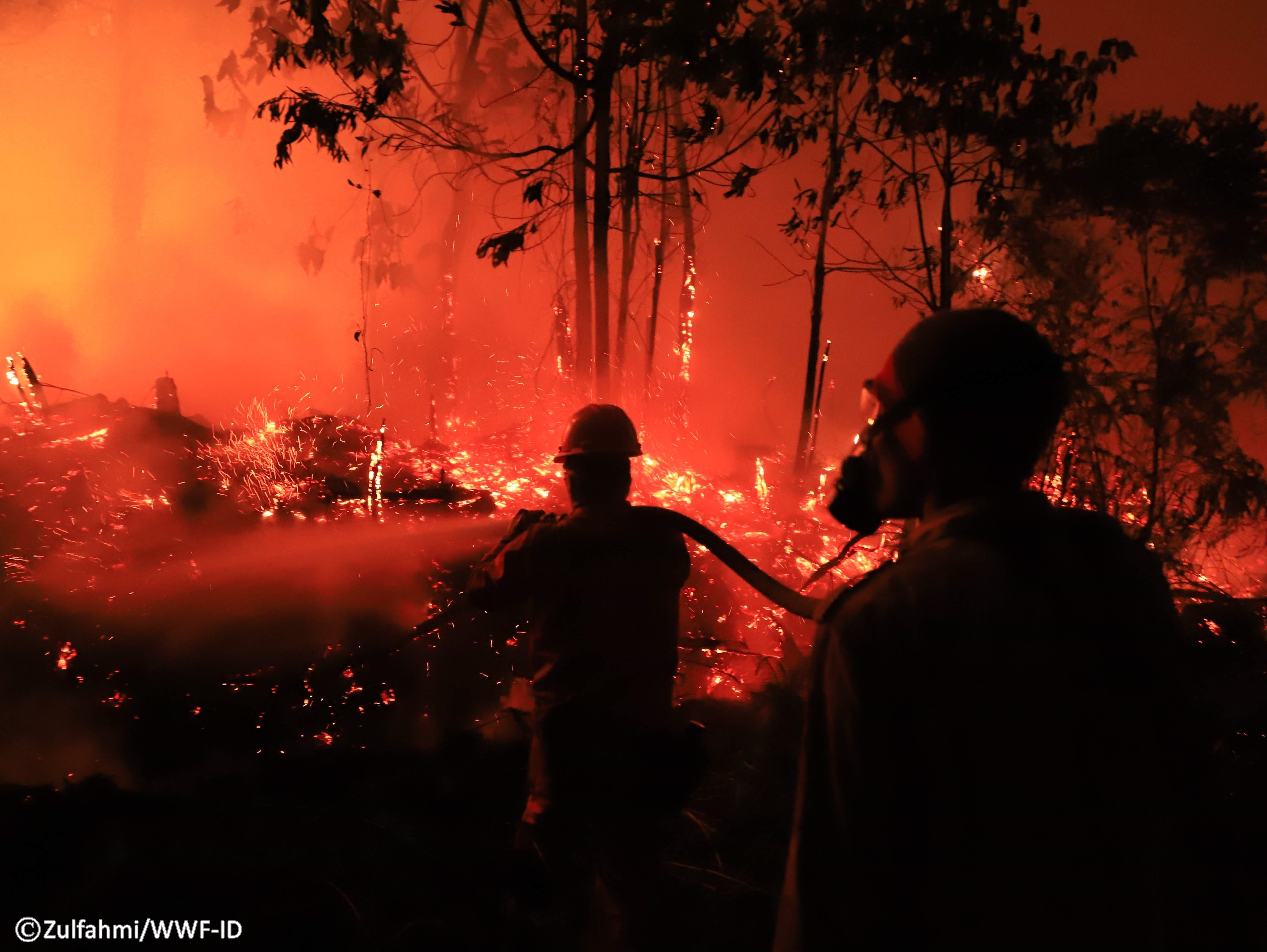 Tim terus berjibaku memadamkan api hingga malam hari