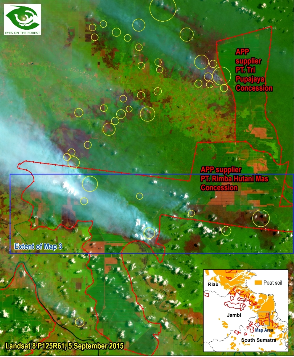 Map 1. Landsat 8 of 5 September 2015 shows some fires (inside yellow circles) and burned areas (dark red-brown) inside and outside APP supplier PT. Rimba Hutani Mas concession and fires getting close to another APP supplier, PT. Tri Pupajaya concession. The image also shows smokes from fire.