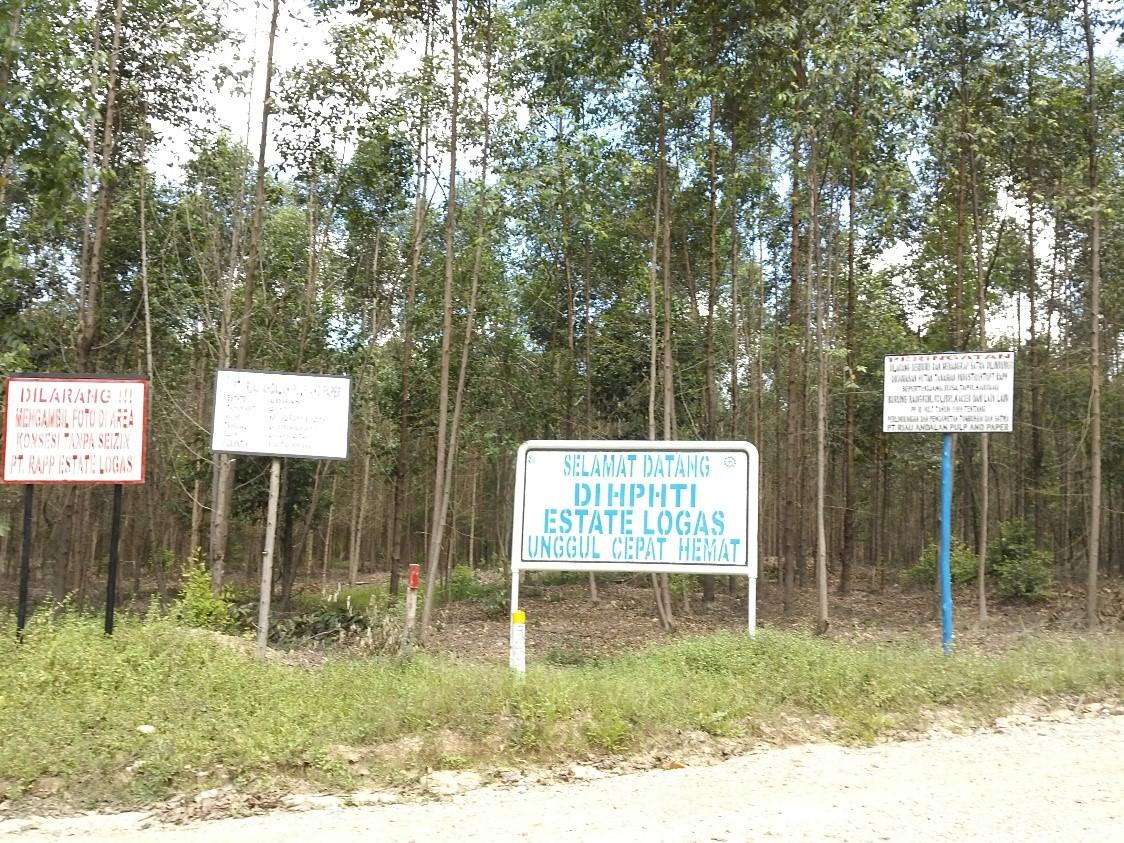 PT RAPP Logas sector